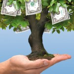 Money does not grow on trees